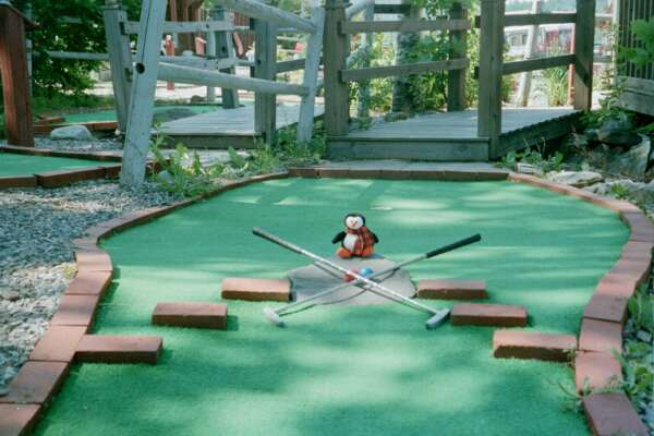 T's Miniature Golf