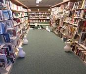 Hall Memorial Library Miniature Golf