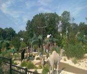 Essex County Safari Minigolf