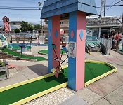 Flamingo Mini Golf